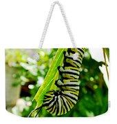 Monarch Caterpillar 5 Weekender Tote Bag