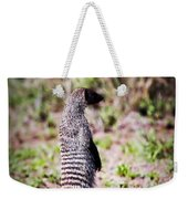 Mongoose Standing. Safari In Serengeti Weekender Tote Bag
