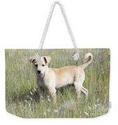 Mongrel Dog Puppy Weekender Tote Bag