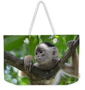 Monkey Business Weekender Tote Bag by Bob Christopher