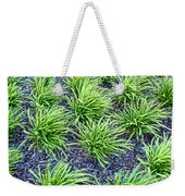 Monkey Grass Abstract Weekender Tote Bag