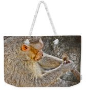 Monkey Playing With Tail Weekender Tote Bag
