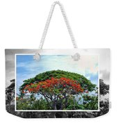 Monkey Pod Trees - Kona Hawaii Weekender Tote Bag
