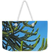 Monkey Puzzle Tree Weekender Tote Bag