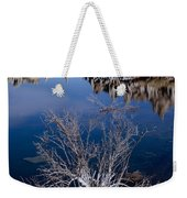 Mono Lake Salt Bush Weekender Tote Bag