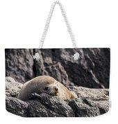 Montague Island Seal Weekender Tote Bag