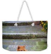 Montepulciano Cat Weekender Tote Bag