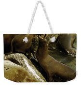 Monterey Bay Where The Seals Play Weekender Tote Bag