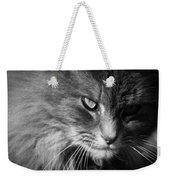 Moody Cat Weekender Tote Bag