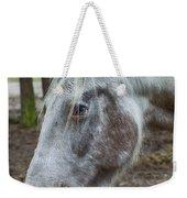 Moon Eyed Horse Weekender Tote Bag