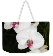 Moon Orchid With Purple Center Weekender Tote Bag