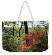 Moore State Park Spring Weekender Tote Bag