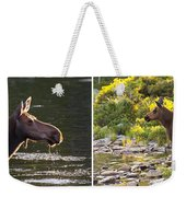 Moose And Baby 5 Weekender Tote Bag