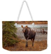 Moose Calf Weekender Tote Bag