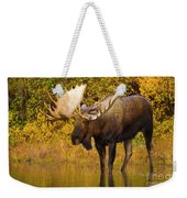 Moose In Glacial Kettle Pond  Weekender Tote Bag