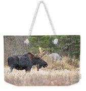 Moose Pictures 75 Weekender Tote Bag