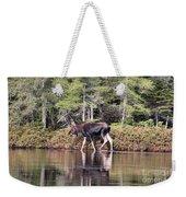 Moose_0586 Weekender Tote Bag