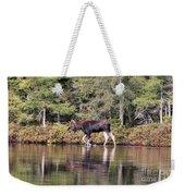 Moose_0587 Weekender Tote Bag