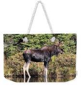 Moose_0609 Weekender Tote Bag
