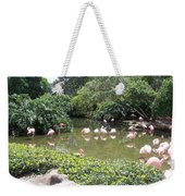 More Pink Flamingos Weekender Tote Bag