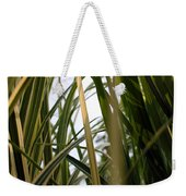 More Tall Grass Weekender Tote Bag