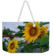 Morning Field Of Sunflowers Weekender Tote Bag