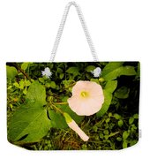Morning Glory Glow Weekender Tote Bag