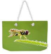 Morning Hoverfly Weekender Tote Bag