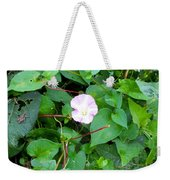 Morning Magenta Glow Weekender Tote Bag
