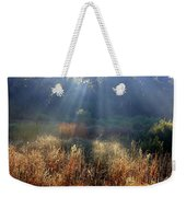Morning Rays Through Live Oaks Weekender Tote Bag