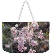 Morning With A Spider Weekender Tote Bag