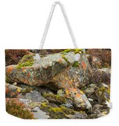 Moss And Lichens In The Scottish Highlands Weekender Tote Bag
