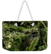 Moss And Stones By The Turquoise Forest Pond On A Summer Day No4 Weekender Tote Bag