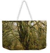 Moss-covered Bigleaf Maple  Weekender Tote Bag