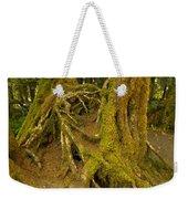 Moss-covered Tree Trunks  Weekender Tote Bag