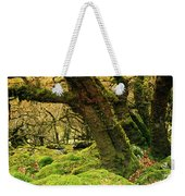 Moss Covered Trees In A Forest Weekender Tote Bag