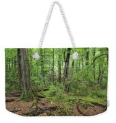 Moss Covered Trees In Forest, Lord Weekender Tote Bag