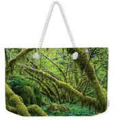 Moss Grows On Vine Maple Trees  Acer Weekender Tote Bag