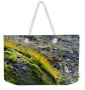 Moss In The Light Weekender Tote Bag