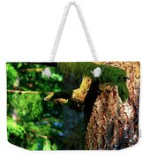 Moss On The Evergreens Weekender Tote Bag