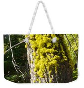 Moss On Tree Along Sentinel Dome Trail In Yosemite Np-ca Weekender Tote Bag