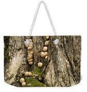 Moss-shrooms On A Tree Weekender Tote Bag