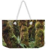 Mossy Big Leaf Maples In Hoh Rainforest Weekender Tote Bag