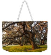 Mossy Trees At Sunset Weekender Tote Bag