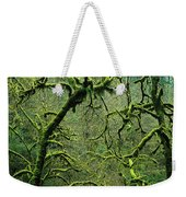 Mossy Trees Leafless In The Winter Weekender Tote Bag