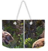 Mother And Baby Moose Weekender Tote Bag
