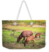 Mother Elk With Her Young Weekender Tote Bag