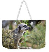 Motionless Meekat Weekender Tote Bag