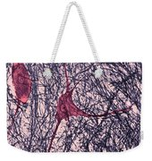 Motor Neuron, Cat Spinal Cord Weekender Tote Bag