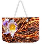 Mount Margaret Spring 14379 Weekender Tote Bag